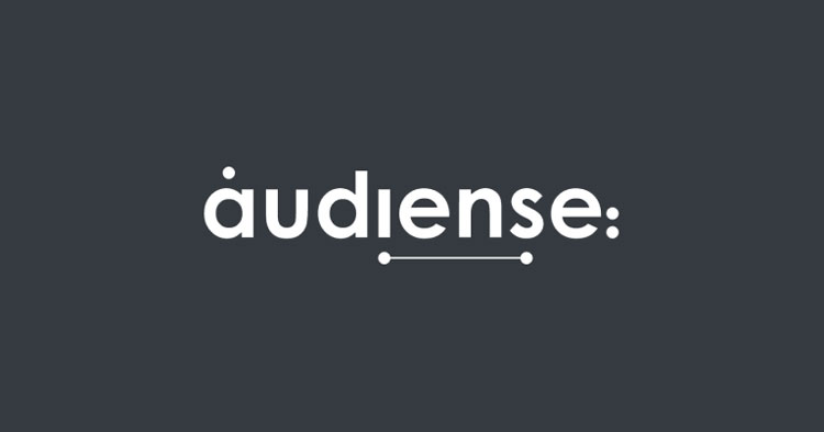 audience-connect